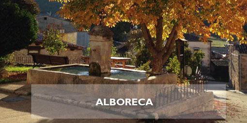 Alboreca