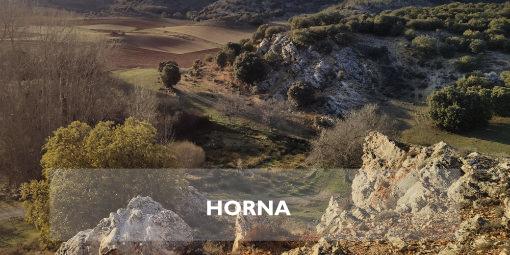 Horna